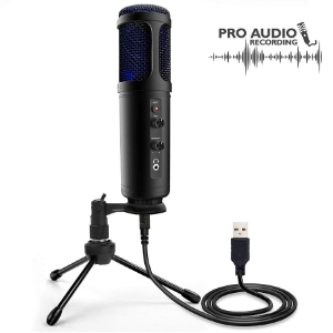 Portable Audio Audio Mic